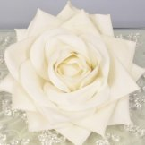 Velvet Cream Rose Head Hire